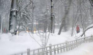 Снегопад в московском регионе