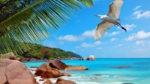 Tourism-Info Отдых и развлечения