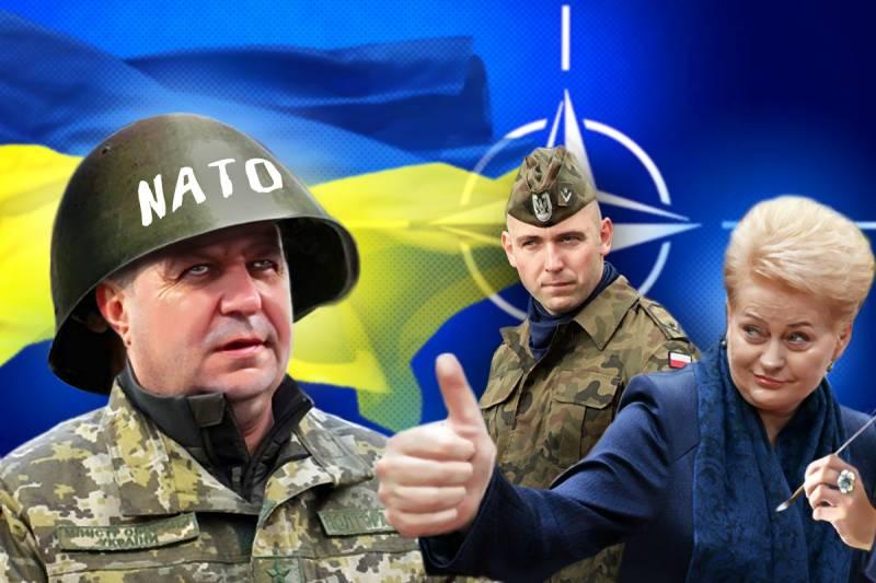 НАТО не принял Украину