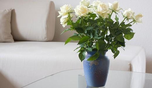 Как сохранить розы дома