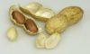 Американские доктора дали рекомендации по предотвращению развития аллергии на арахис у детей